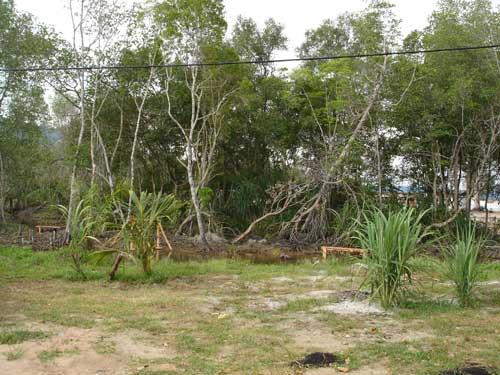 A piece of land for sale at Teluk Senangin